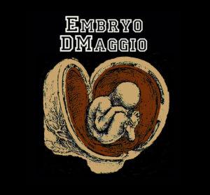 Embryo Dmaggio