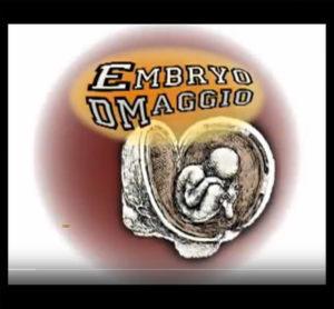 Embryo Dmaggio on YouTube 2
